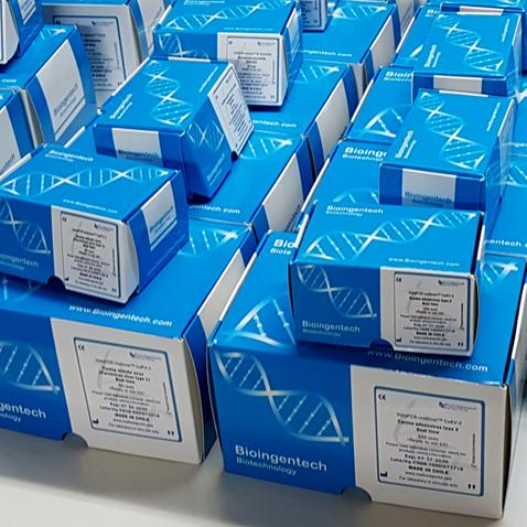 Swine delta coronavirus detection kits – PCR KIT